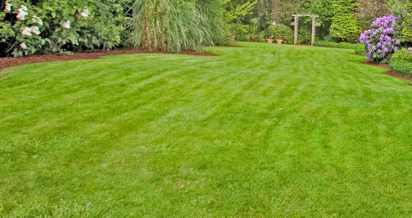 Lawn Care and Maintenance Blairstown, NJ